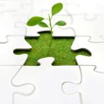 mpracticeplus-company-growth